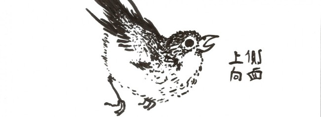 cropped-sumi_bird.jpg