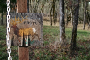 deer photo sign photo